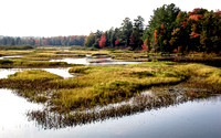 Photo of the Day: Marshland View